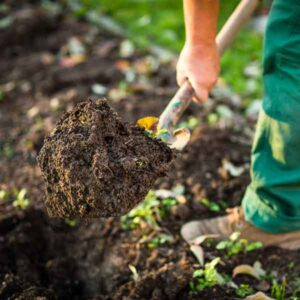 Dirt, Soil, and Leaf Compost